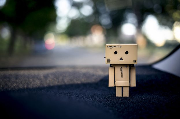 Cartoon Photo Danbo