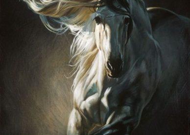 احصنة وخيول
